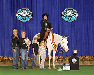 Championship Winning Paint Horses For Sale
